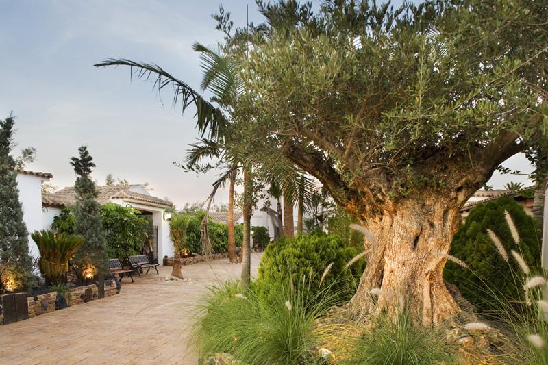 Terraza Nazaret